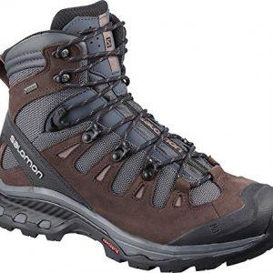 Salomon Women's Quest 4D 3 GTX Backpacking Boots Hiking Shoe