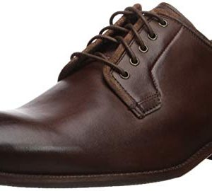 Cole Haan Men's Wagner Grand Postman Oxford Chestnut