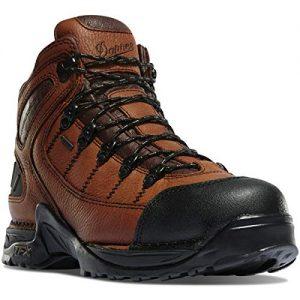Danner Men's Gore-Tex Hiking Boot, Brown