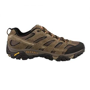 Merrell Men's Moab 2 Vent Hiking Shoe, Walnut