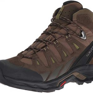 Salomon Men's Quest Prime GTX Backpacking Boots, Canteen/Wren/Martini Olive
