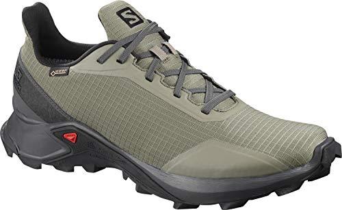 Salomon Men's Alphacross GTX Trail Running Shoes, Castor Gray/Ebony/Black