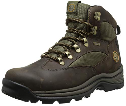 Timberland Men's Chocorua Trail Mid Waterproof Snow Shoe, Brown/Green