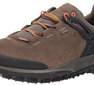 Salewa Men's Wander Hiker GTX Hiking Shoe, Walnut/New Cumin, 12