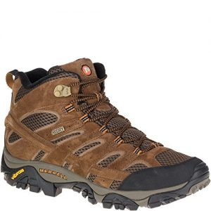Merrell Men's Moab 2 Mid Waterproof Hiking Boot, Earth, 9 M US