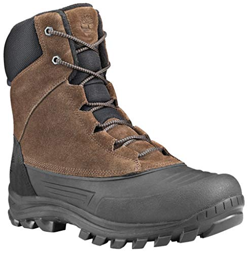 Timberland Men's Snowblades Insulated Warm Lined Tall Boot Snow, Dark Brown Suede, 080M M US