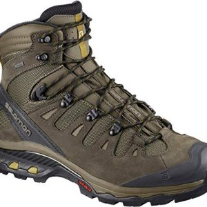 Salomon Men's Quest 4D 3 GTX Backpacking Boots, Wren/Bungee Cord/Green